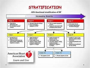 Heart Failure Quick Guide 2013