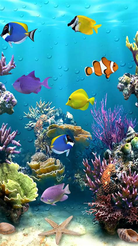 fish wallpaper beautiful fish tropical Tropical