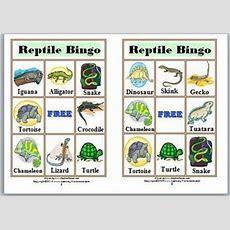 Bingo Printable  Reptile Bingo Game  Animal Classification  Science  Reptiles Preschool