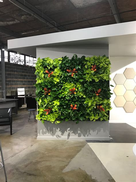 living wall  innergreen  design install  maintain