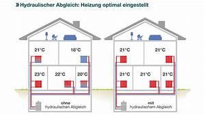 Hydraulischer Abgleich Berechnen Heimeier : hydraulischer abgleich ~ Themetempest.com Abrechnung