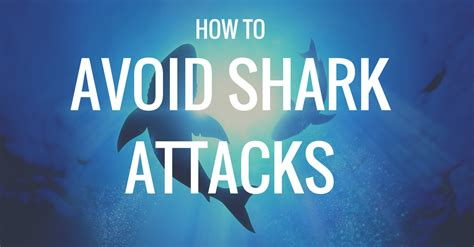 How To Avoid Shark Attacks & Why It Doesnt Matter  Gone. Walk In Clinic Plantation Web Design New York. Ideas For Bathroom Remodeling On A Budget. Electronic Data Capture Companies. Succession Planning Form Master In Healthcare. Columbus Criminal Defense Attorney. Grants For Remodeling Your Home. A New Day Treatment Center What Is Mail Merge. Bachelor Degree In Social Work Online