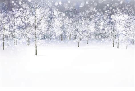 la musique de chambre forêt blanche décor géant sous la neige