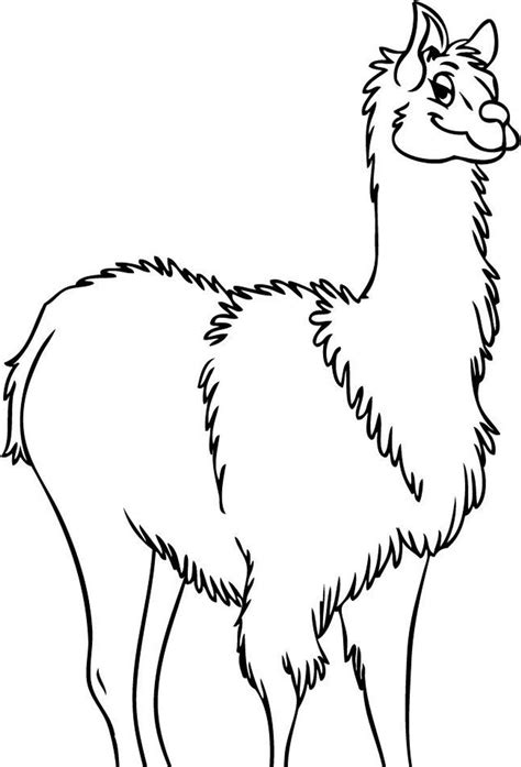 Baby Llama Coloring Pages Coloring Pages