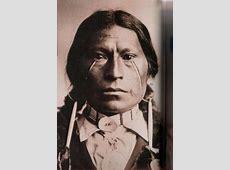 Native Americans One Tawny Stranger