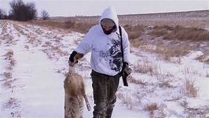 Coyote Hunting (3 Dead Coyotes) - YouTube