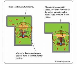 Automotive Thermostat Function
