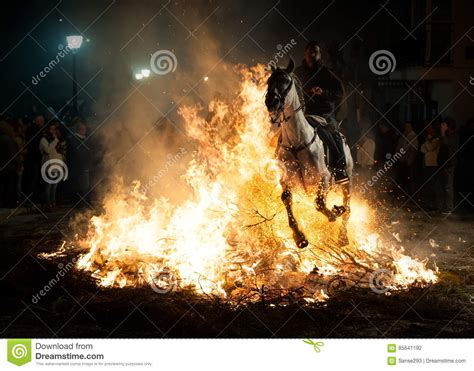 jumping fear horses above fire without