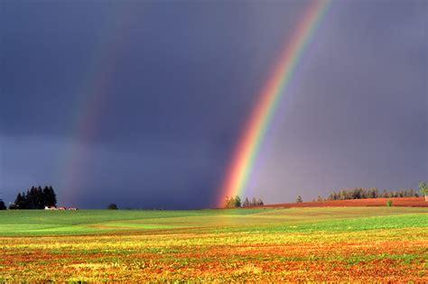 rainbow desktop wallpapers   latorocom