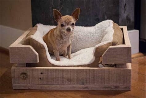 pallet dog bed fun filled   pallet woods wooden