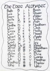 tree alphabet ogham tree name letter associated with tree tree ogham symbol runic