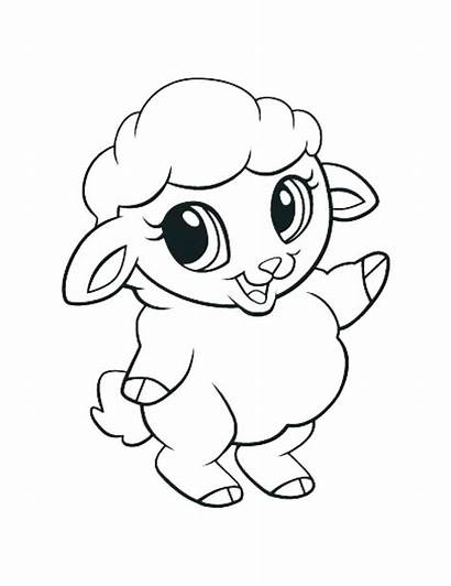 Coloring Animal Pages Lamb