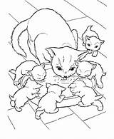 Coloring Cat Cats Printable Kitten Kittens Kitty Printables sketch template