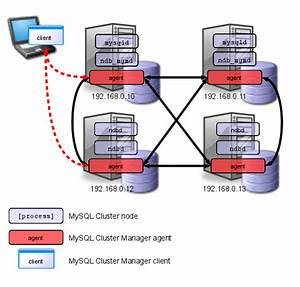 Mysql    Mysql Cluster Manager 1 3 User Manual    1 2