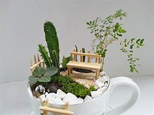 How to make a fairy garden with teacups Craft projects