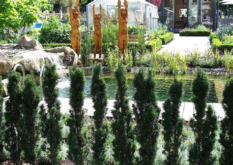 pflanzen ohne wurzeln schmale hecke mit wenig wurzeln und platzverbrauch