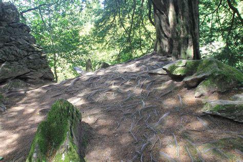 badger cave the wayward way