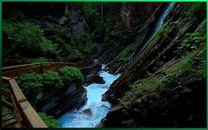 HD Wallpapers: Nature Widescreen HD Wallpaper 1680 X 1050 ...
