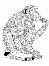 Monkey Coloring Pages Adult Adults Zentangle Stress Realistic Anti Animal Vector Colouring Printable Pattern Lace Drawing Mandala Illustration Sheets Books sketch template