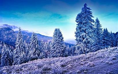 Winter Wallpapers Frost Iphone Trees Mountains Rivers