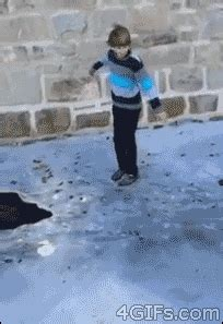 funny animated gif images    laugh  day