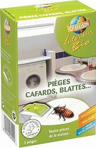 Piege A Cafard : pi ges cafards et blattes lot de 3 ~ Melissatoandfro.com Idées de Décoration