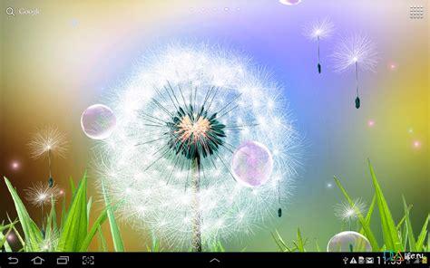 Dandelion Live Wallpaper скачать 1.0.1 на Android