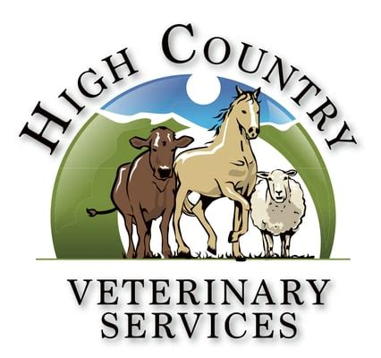 Steamboat Vet by High Country Veterinary Services Llc Dyrl 230 Ger