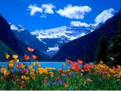 Beautiful Cool Beautif...Beautiful Nature Scenery Wallpapers