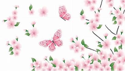 Butterflies Butterfly Flowers Flower Pink Spring Clipart