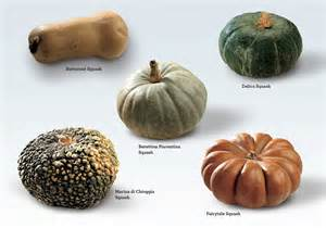 Winter Squash Pictures and Names