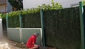 Cloison Jardin Anti Bruit : nuisance sonore ext rieur due chien voisinage fermisol ~ Edinachiropracticcenter.com Idées de Décoration