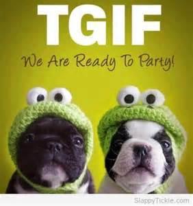 TGIF Funny Animal Cartoon