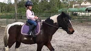 Kids Riding Horses 6 Year Old Horse Jumper 1st Lesson