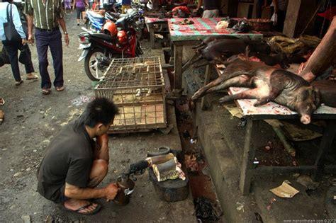 meat market macabre  gruesome tomohon market