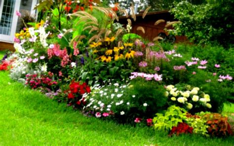 yard flowers landscaping front yard landscaping ideas with unique plant and flower home colorful flowers on green