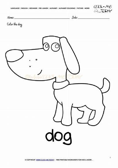 Coloring English Alphabet Words Beginner Language Junior