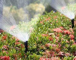 Pflanzen Automatisch Bewässern : bew sserungssysteme f r garten terrasse balkon gartenbew sserung ~ Frokenaadalensverden.com Haus und Dekorationen
