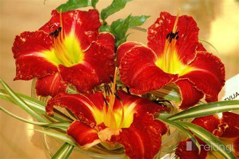 """Ziedu gaistošais skaistums izstādē """"Mirkļa zieds ..."""