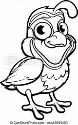 Cartoon Quail Bird Character sketch template