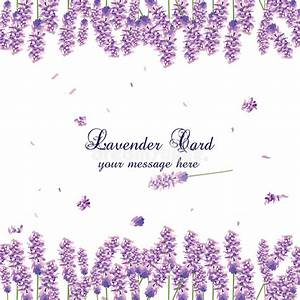 Lavender Card Border Vector Stock Vector - Illustration of ...