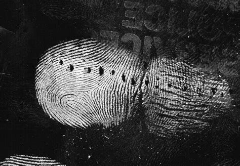 coffee cup fingerprint powder    adhere