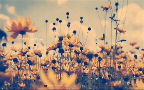 (12285) Summer Tumblr Background Hd Wallpaper