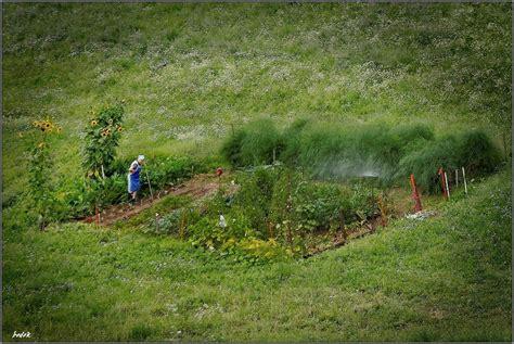 Der Wunderbare Garten by Der Wunderbare Garten Der Mathilde S Foto Bild