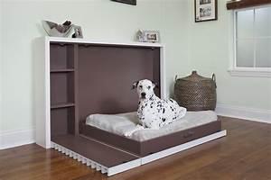 Murphy, Dog, Bed, U2014, Shoebox, Dwelling