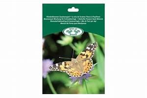 mix graines pour papillons With photo jardin avec palmier 17 nematodes insectes achat de nematodes contre les