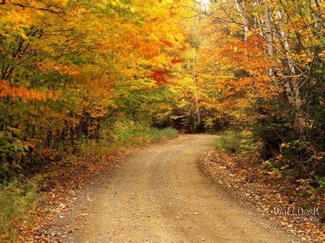 Beautiful Autumn Wallpapers by Beautiful Autumn Season Wallpapers Hd Wallpapers