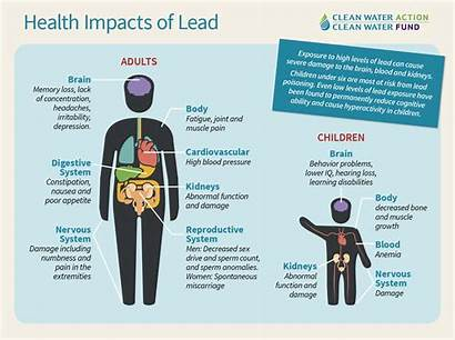 Lead Water Drinking Exposure Health Impacts Clean