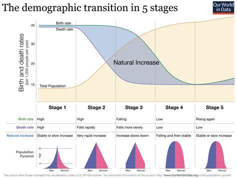 Indonesia Unite Graphic 5 fejl i klassificeringen af befolkningspyramider