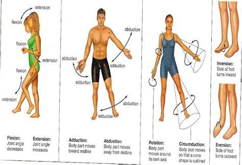 Joints Movements (photos/illustrations)